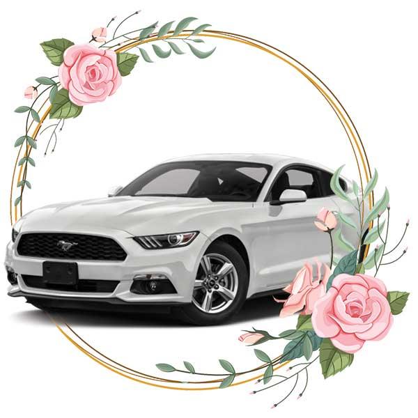 Ford Mustang / wedding cars in Baku by Karavan Rent a car
